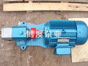 F型不锈钢泵