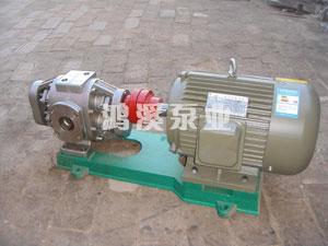 FXB系列外润滑不锈钢泵